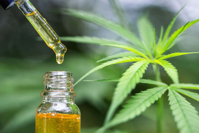 Upsides and Downsides of using CBD oil